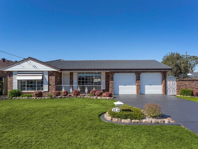 25 Baldi Avenue, Panania, NSW 2213