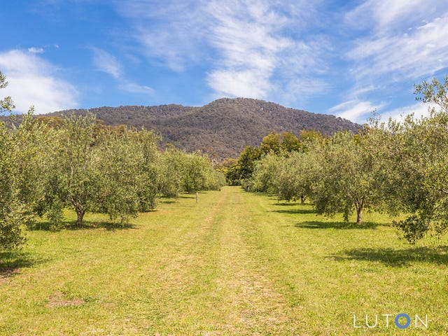 1060 Furners  Road, Bemboka, NSW 2550
