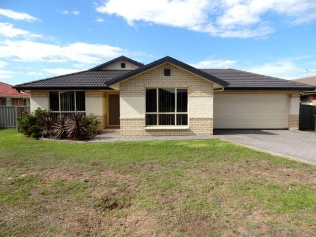 41 Niven Parade, Rutherford, NSW 2320