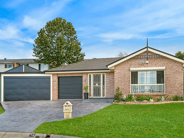 12 Webb Place, Minto, NSW 2566