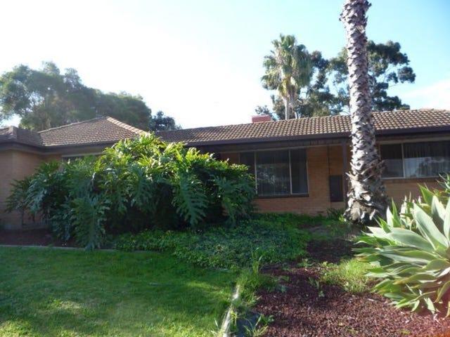 4 Red Gum Avenue, Redwood Park, SA 5097