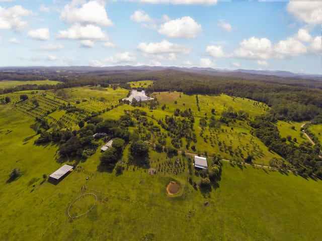 - Tamban Road, Eungai Creek, NSW 2441
