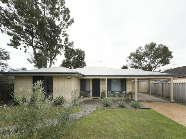 7 Reseda Elbow, Banksia Grove, WA 6031