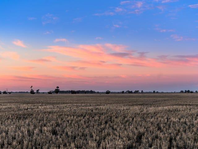 Collie-Bourbah Road, Merrigal, NSW 2827