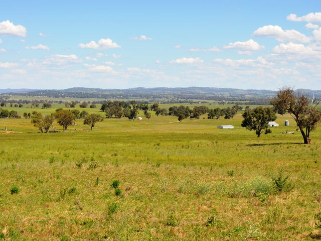 343 Puggoon Road, Gulgong, NSW 2852