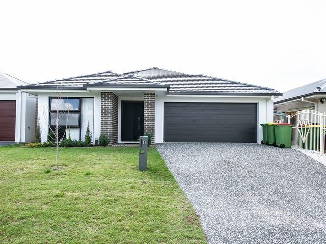 11 Bredbo Street, Ormeau Hills, Qld 4208