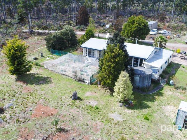 446 Prossers Road, Nunamara, Tas 7259