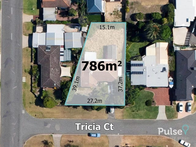 4 Tricia Court, Shelley, WA 6148
