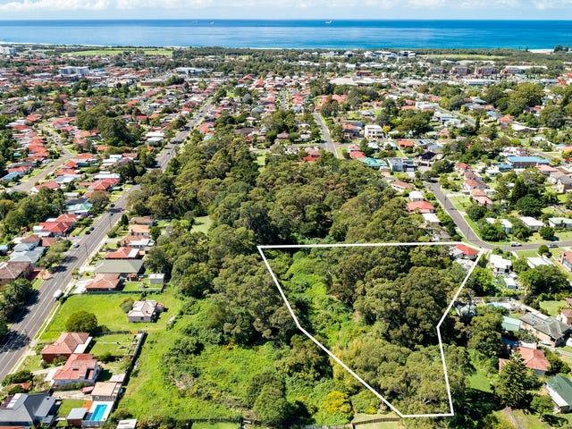 42 Bassett Street, Fairy Meadow, NSW 2519