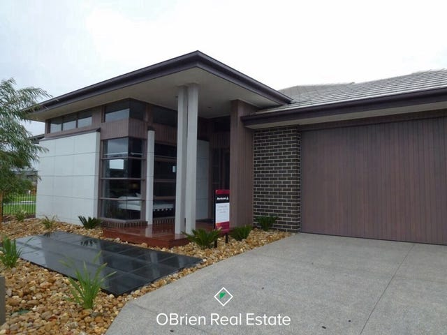 36 Flowerbloom Crescent, Clyde North, Vic 3978