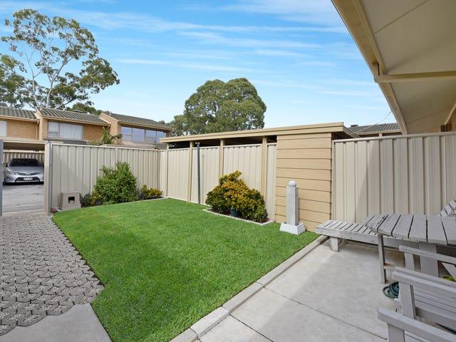 3/13-17 Austral Terrace, Morphettville, SA 5043