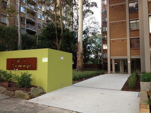 53/69 Cook Road, Centennial Park, NSW 2021