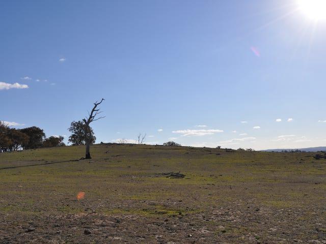 2127 Triamble Road, Triamble, NSW 2850
