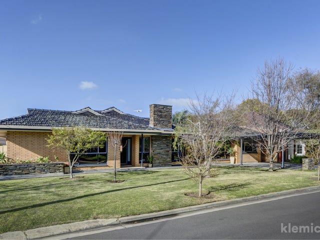 4 Audrey Street, Novar Gardens, SA 5040