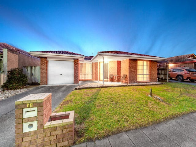 56 Gilmore Crescent, Lynbrook, Vic 3975