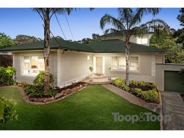 10 Vizma Court, Banksia Park, SA 5091