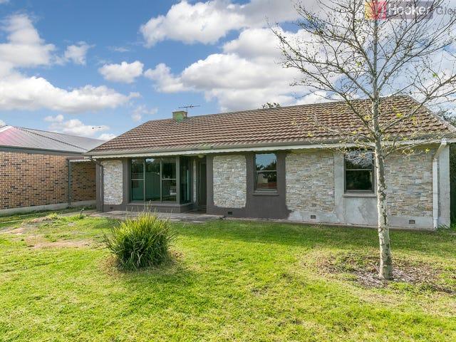 19 Norrie Avenue, Clovelly Park, SA 5042
