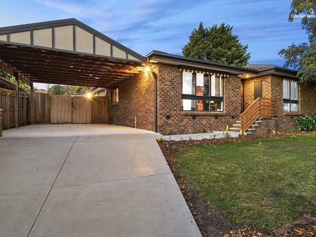 105 James Cook Drive, Endeavour Hills, Vic 3802