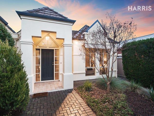 37A Haig Street, Netherby, SA 5062
