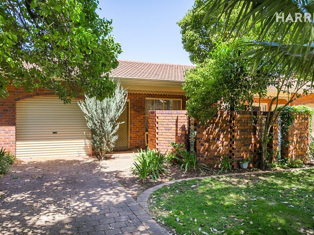 3/17  Greer St, Unley Park, SA 5061