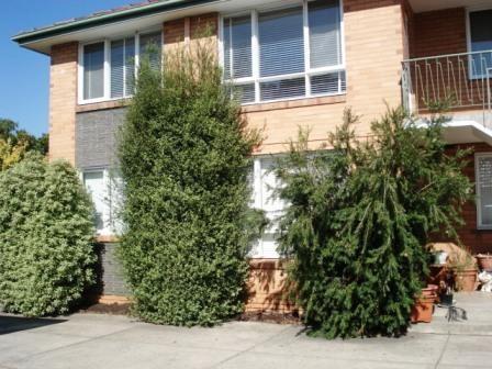 6/94 Grange Road, Carnegie, Vic 3163