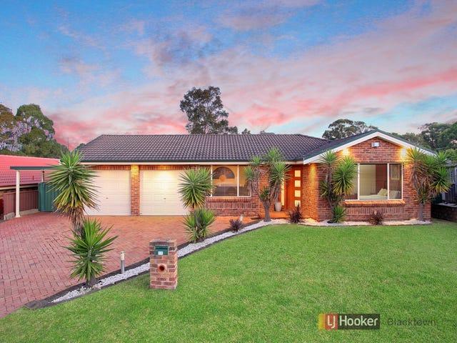 15 Sinclair Avenue, Blacktown, NSW 2148