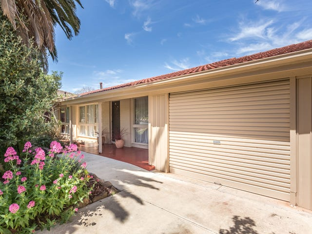 63 Maxlay Road, Modbury Heights, SA 5092