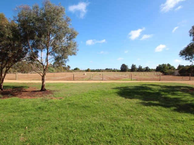 51, Govenment Road, Renmark, SA 5341
