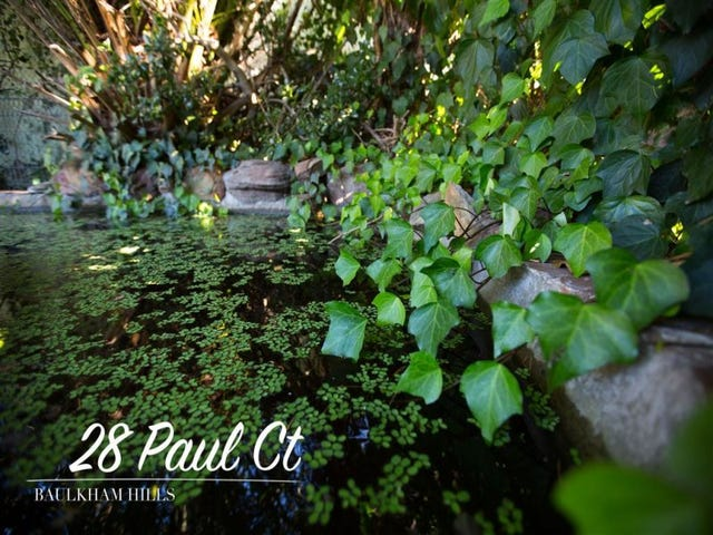 28 Paul Court, Baulkham Hills, NSW 2153