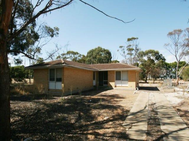 Lot 1 School Terrace, Paskeville, SA 5552