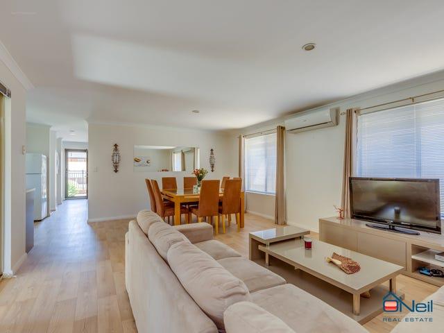 19 Thrive Terrace, Seville Grove, WA 6112