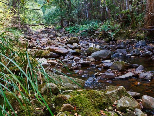 128 Snug Tiers Road, Snug, Tas 7054