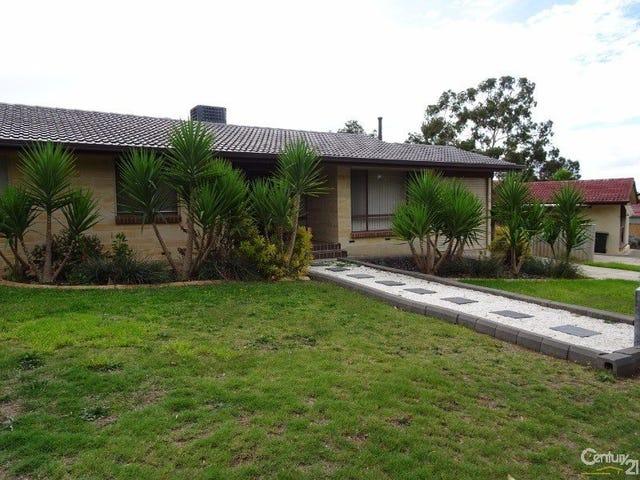 10 Newcombe Drive, Gilles Plains, SA 5086
