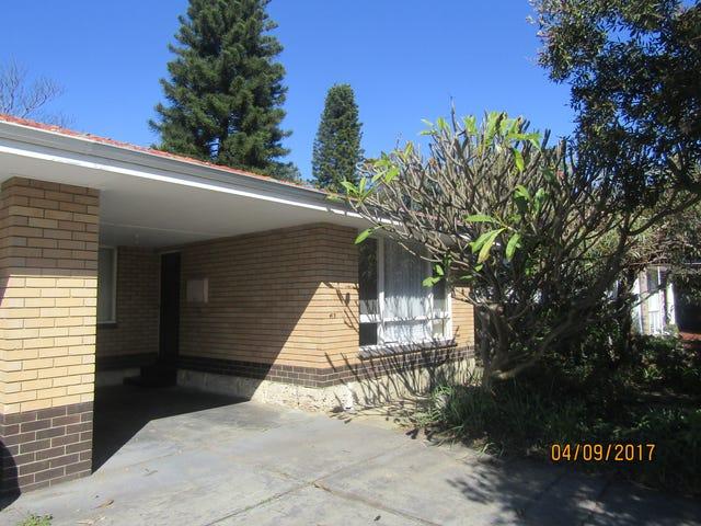 413 Karrinyup Road, Innaloo, WA 6018
