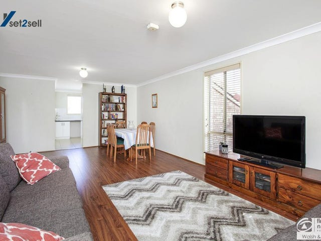 14/103 Hammers Road, Northmead, NSW 2152