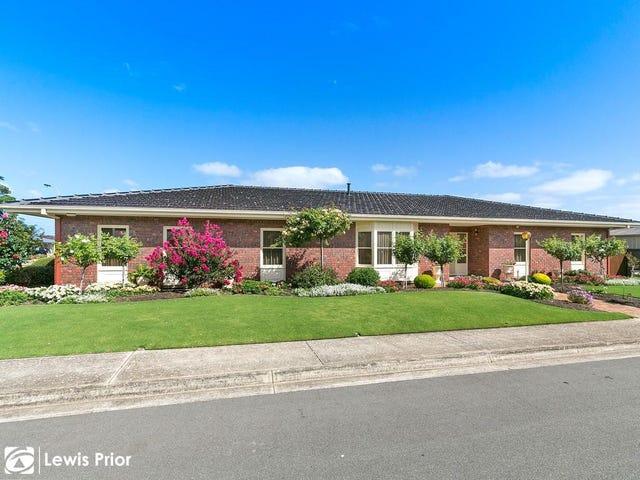 43 Spruce Avenue, Warradale, SA 5046