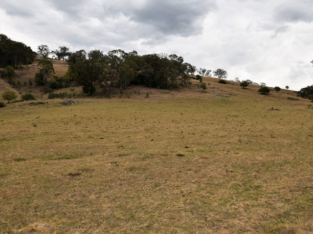 North Wombine Warlands Creek Rd, Blandford, NSW 2338