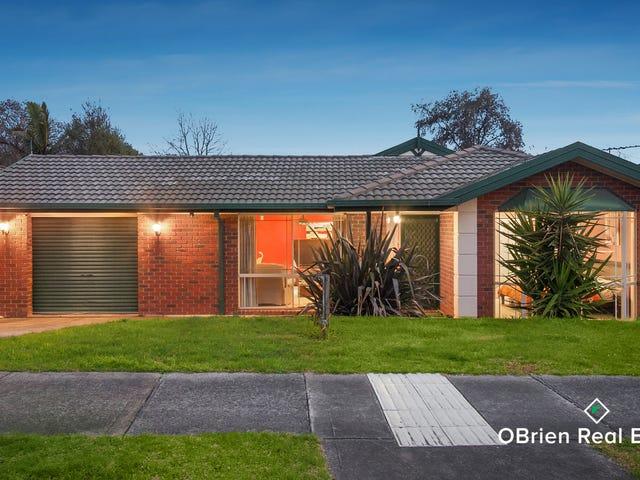 151 Bemersyde Drive, Berwick, Vic 3806