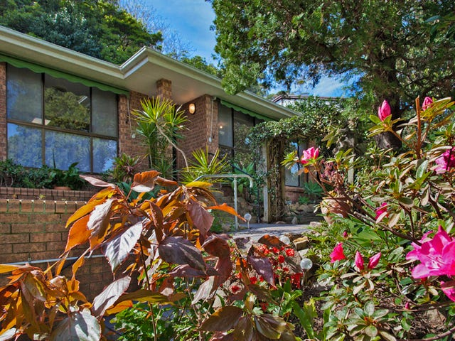 113 Whale Beach Road, Avalon Beach, NSW 2107