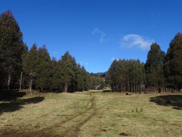 . Azels Road, Mole Creek, Tas 7304