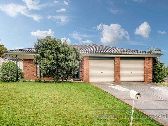 1 Pyalla Avenue, Aberglasslyn, NSW 2320