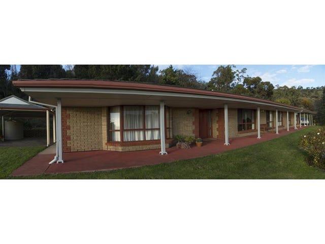 59 Wyfield Street, Wattle Park, SA 5066