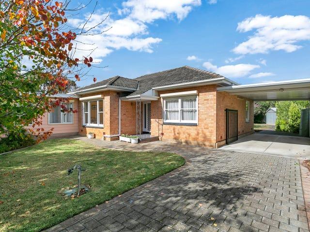 12 Coolah Terrace, Marion, SA 5043