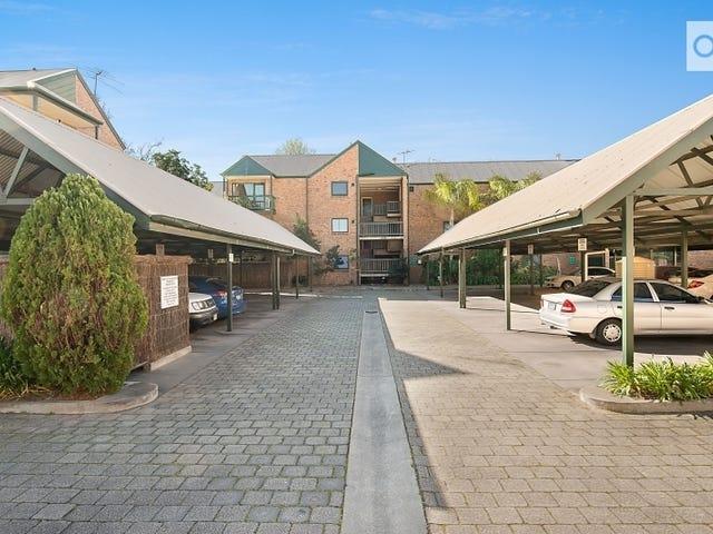 6/388 Carrington Street, Adelaide, SA 5000