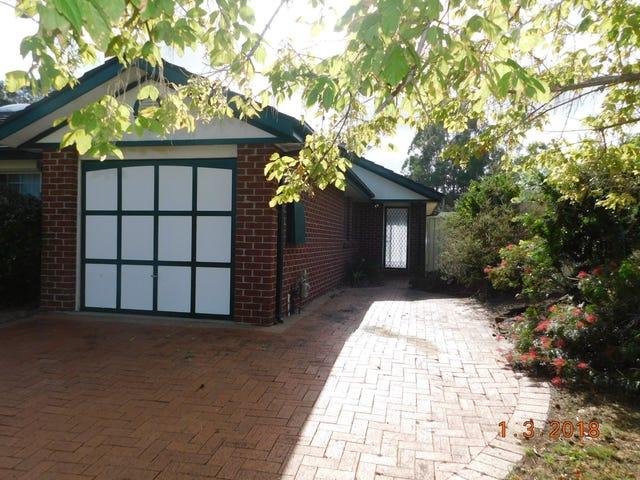 22 Liquidamber Drive, Narellan Vale, NSW 2567