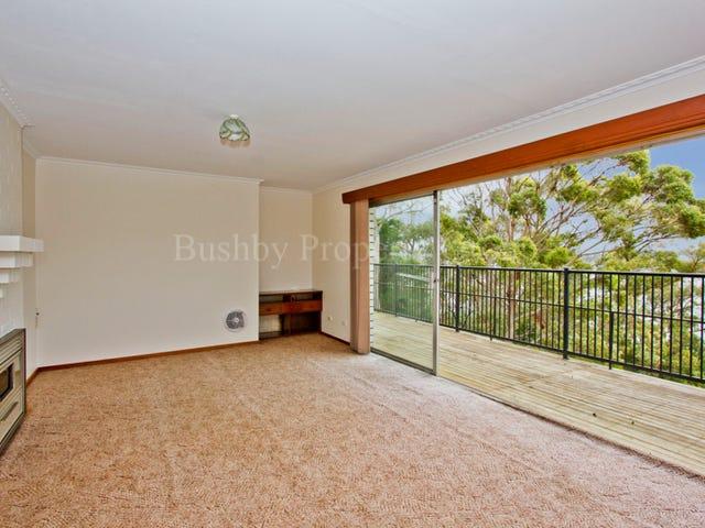 50 Tamar Avenue, George Town, Tas 7253