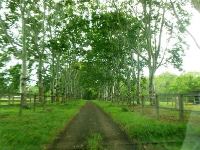 205 Highlands Road, Eudlo, Qld 4554