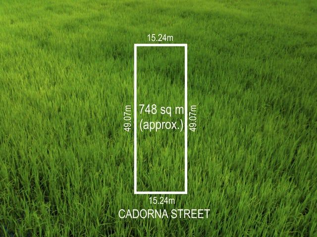53 Cadorna St, Box Hill South, Vic 3128