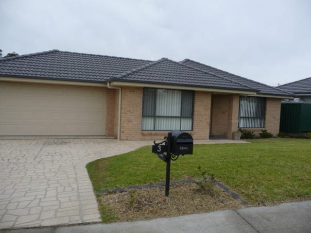 3 Mileham Circuit, Aberglasslyn, NSW 2320