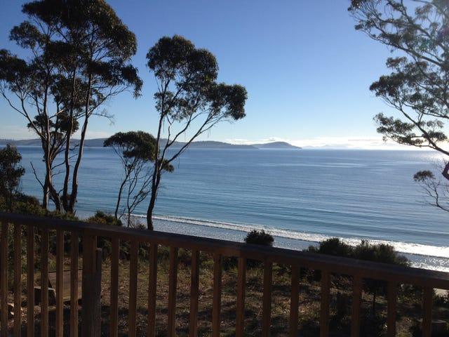 459 Rheban Road, Spring Beach, Tas 7190